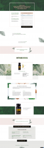 visual of a sales page created for client
